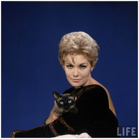 Portrait of actress Kim Novak w. Siamese cat 1958 Elliot Elisofon