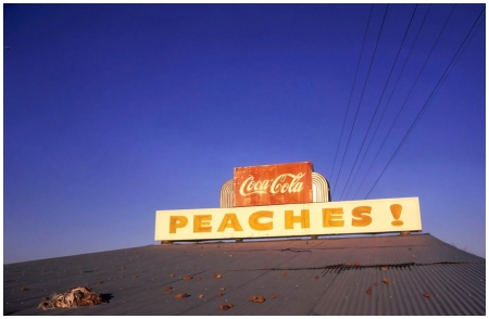 William Eggleston_Untitled 1971