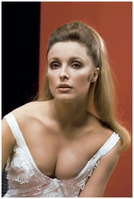Headshot of Sharon Tate (1943-1969), US actress, wearing a white low cut top, in a studio portrait, against a red and black background, circa 1965. (Photo by Silver Screen Collection:Getty Images)
