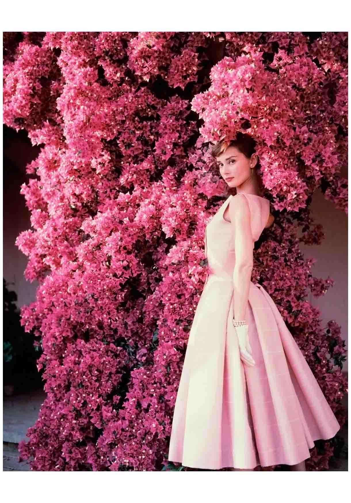 Audrey Hepburn Pleasurephoto Pagina 4