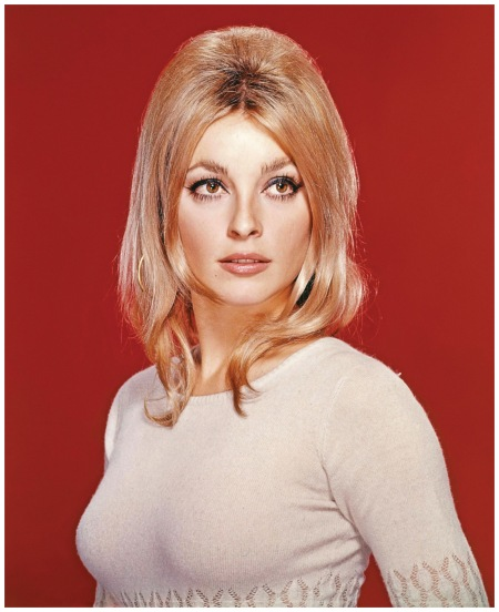 Sharon Tate MGM Publicity Photograph, C. 1966 Getty Archive