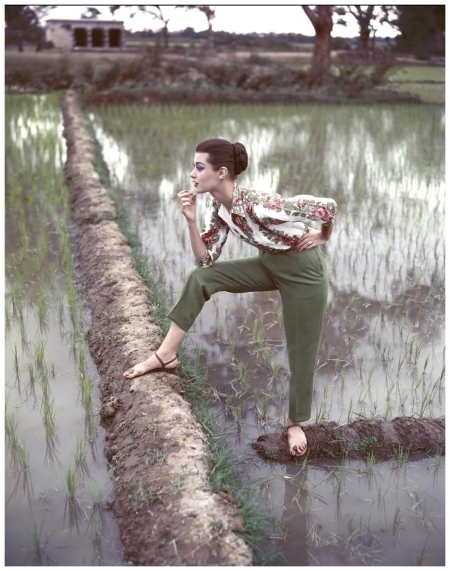 Paddy Fields in the late summer, India, Vogue, 1956 - Photo Norman Parkinson