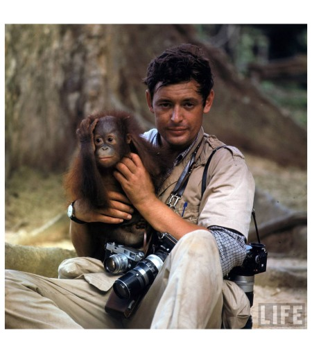 LIFE photoographer Co Rentmeester holding a baby orangutan in the jungles of North Borneo 1968 Co Rentmeester