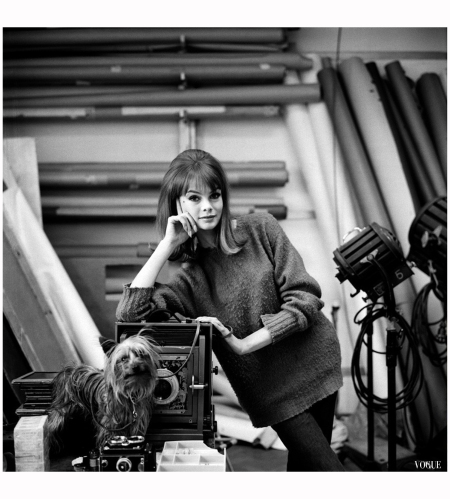 Jean Shrimpton, photographed with Yorkshire Terrier by Cecil Beaton in June 1964. Vogue: