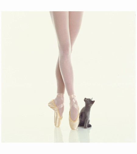 Ballerina and Kitten, 1997