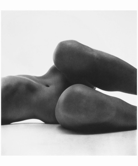 Nude No. 58, - New York 1949 print 1976 Photo Irving Penn
