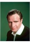Promotional studio headshot portrait of American actor Marlon Brando 1950's