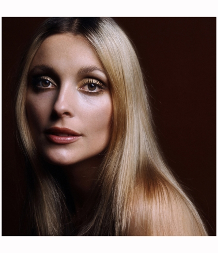 Sharon Tate 1968 The wife of film director Roman Polanski, Tate was murdered by followers of Charles Manson on 8th August 1969 Terry O'Neill.