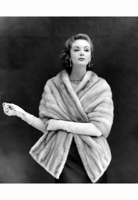 %22Champagne Mink Stole%22 - by Kenneth Heilbron