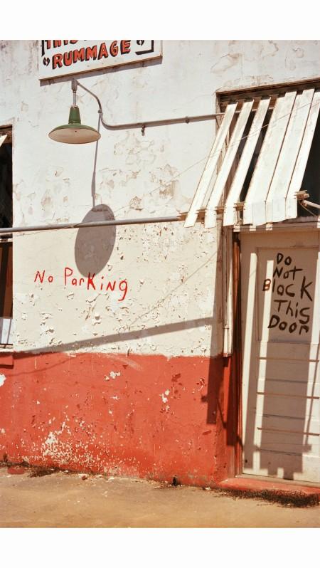Democratic Forest © William Eggleston b parking