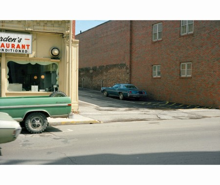 Democratic Forest © William Eggleston b