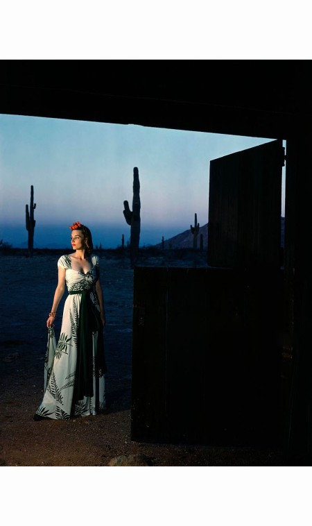 Model wearing Celanese rayon cactus green gown, standing in barn door with cacti and Southwest landscape in background at dusk © Luis Lemus
