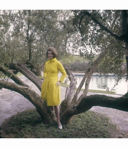 Sylva Koscina posing near an olive tree 1960 © Marisa Rastellini