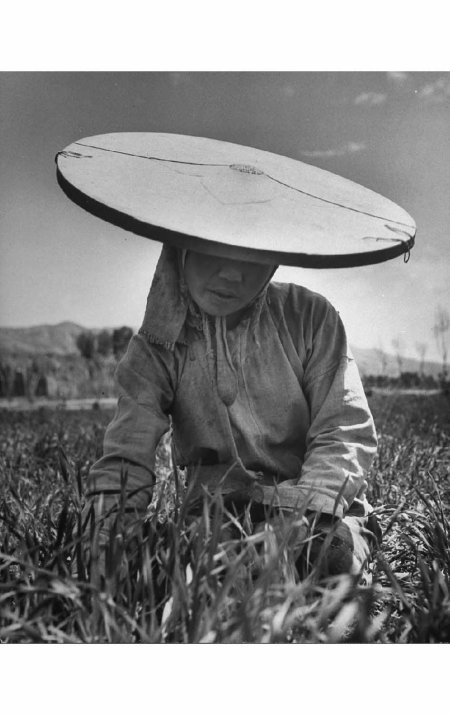 Farm woman made her own hat of white muslin and a bamboo hoop set 1947 mark Kauffman