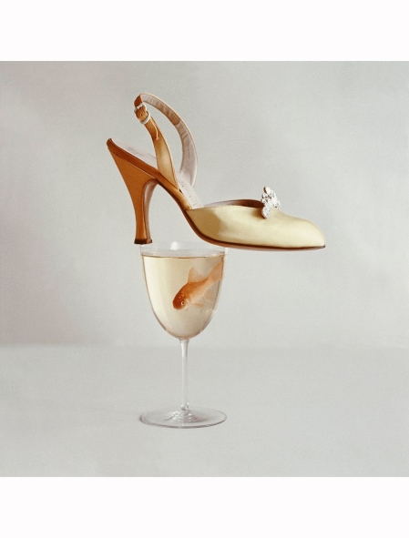 Still life of yellow satin sling back with rhinestone buckle by Herbert Levine, balanced on a wine glass containing a goldfish