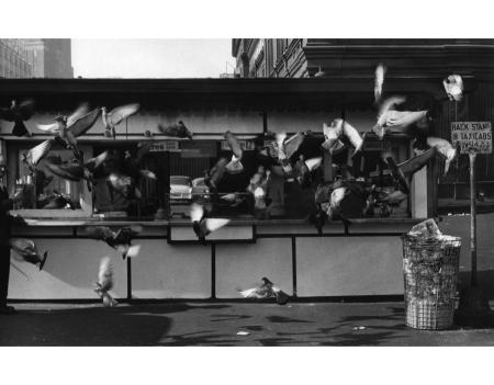 new-york-1955-e