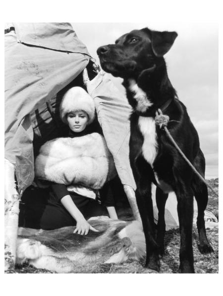 gunel-person-in-blue-fox-fur-cape-from-saga-rovaniemi-lapland-1963-photo-f-c-gundlach
