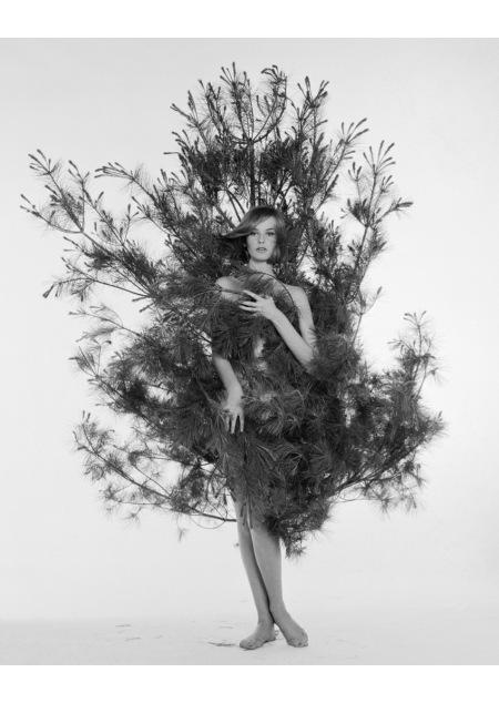 Agneta Frieberg, ca. 1959