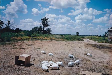 Black Bayou Plantation 1974 © William Eggleston