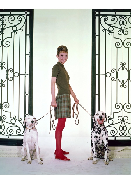 Audrey Hepburn 1961 **J.S. : © Bud Fraker