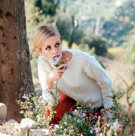 l Twiggy wearing a white jumper as she poses among wild flowers in this countryside picture 1967 twiggy