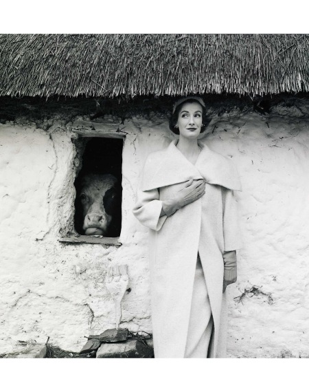 Wenda Parkinson and the Cow Vogue 1954 © Norman Parkinson