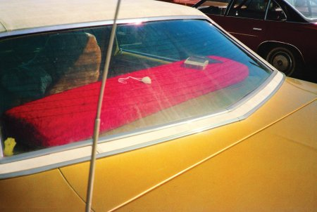 """The Democratic Forest"" series, circa 1983-86 © William Eggleston e"