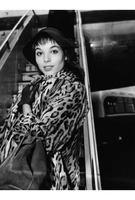 Elsa Martinelli, wearing a hat and leopard print coat, as she arrives at London Airport, February 17th 1956 A W.Cox