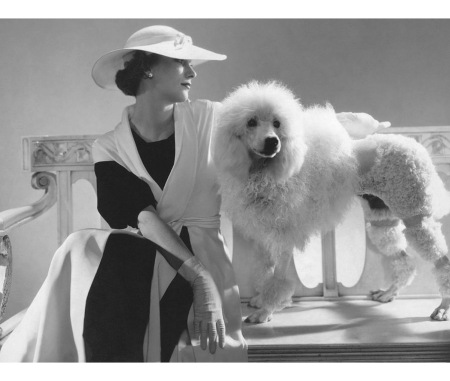 Isabel Johnson wearing a Vionnet coat with a poodle July 1934 © Edward Steichen