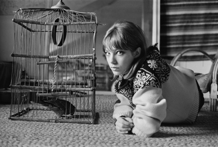 Jane Birkin, 1964 © McKeown:Daily Express