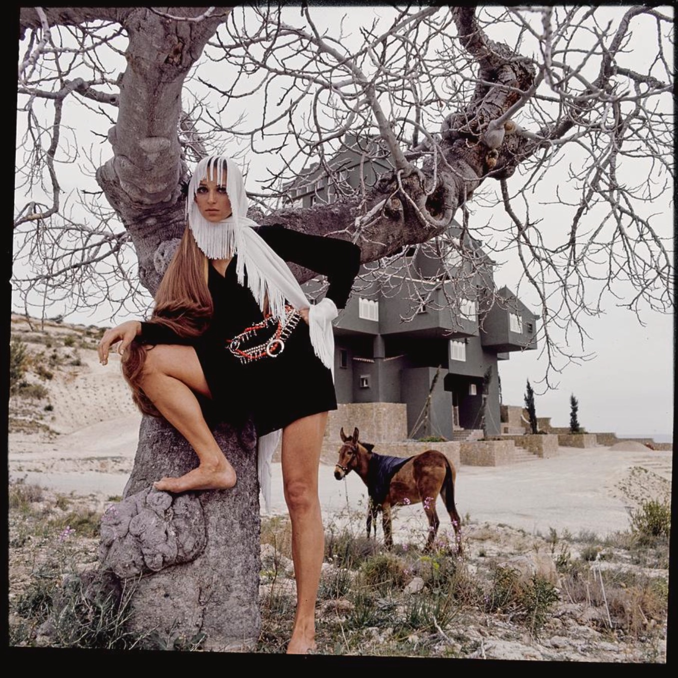 Model wearing a Mary Ann Restivo for Something Special Enkalure dress with a donkey in the background at the Xanadu complex in Clape, Spain Vogue June 1969 © Henry Clarke